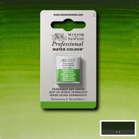 Artist's Aquarel Permanent Sap Green napje 503 S1
